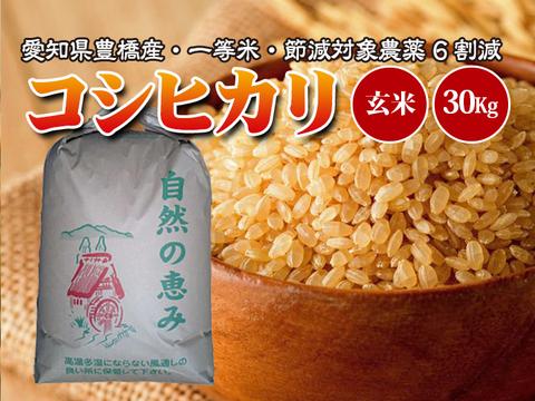 【節減対象農薬6割減・一等米】コシヒカリ 玄米30g(10㎏×3袋)【令和2年・愛知県産】