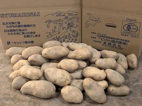 「予約受付中」有機栽培馬鈴薯メークイン10kg