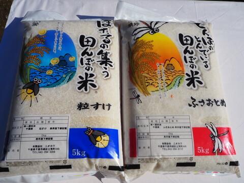 千葉米おすすめ食べ比べセット 粒すけ ふさおとめ  無洗米 10kg