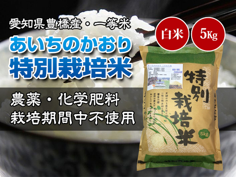 【農薬不使用・一等米】愛知県産 あいちのかおり 白米5kg