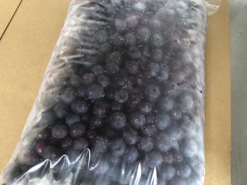 樹上完熟ブルーベリー 冷凍1kg【訳あり】
