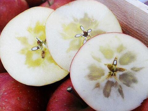 ※先行予約❗ 蜜入り品種☆ 完熟サンふじ  3kg 約9ー12個【家庭用】
