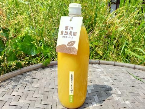 【無添加】しまなみ育ちの伊予柑ジュース(1ℓ×2本)