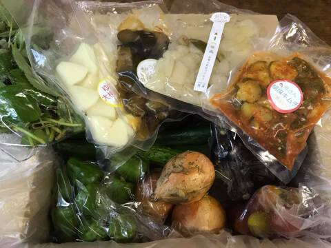 旬の漬物4種+ミニ無農薬野菜セット(素材とともに味わえる)