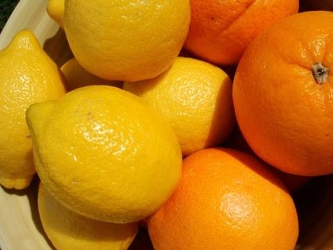 【合計4kg】94歳とみ子ばぁばのなつみとレモンのセット