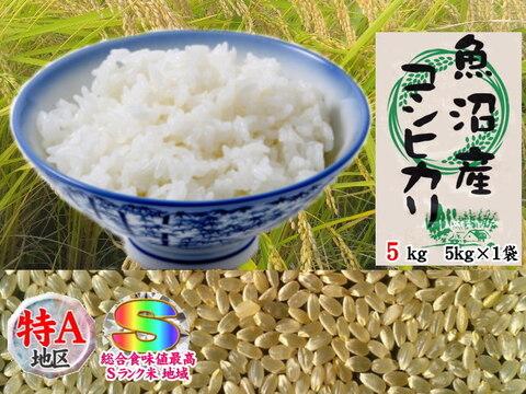 南魚沼産コシヒカリ玄米5kg(5k×1)令和2年産🌾