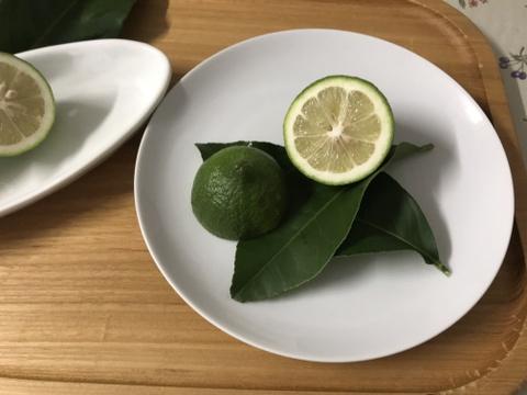 瀬戸内の無人島レモン(2kg/12〜16個)
