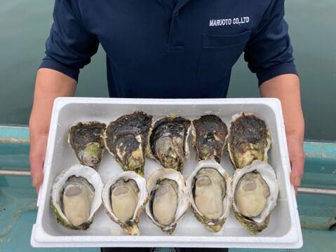 ㊗️3000件‼️突破特別価格‼️【超極濃プレミアム生食用岩牡蠣】超々特大サイズ10個 お客様に「ありがとう」と「美味しさ」を長崎県五島列島よりお届けいたします。