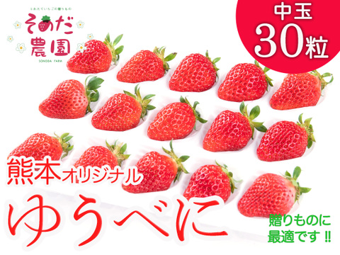 熊本オリジナル【ゆうべに】※   熊紅 いちご 30粒(L・2L  サイズ)