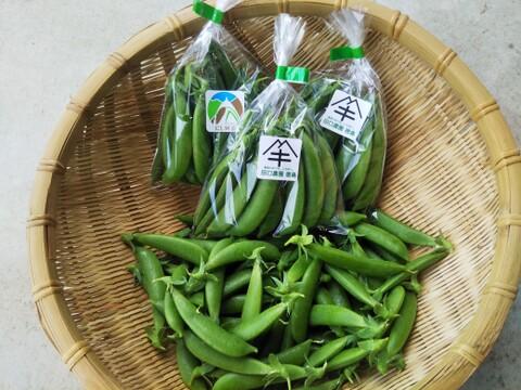 【たっぷり贅沢】送料割安 レターパックプラス仕様 あま~いスナップエンドウ 世界農業遺産 ブランド野菜シリーズ