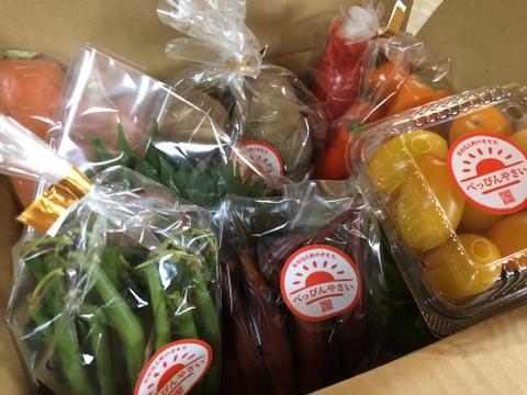 【お届け指定日不可:旬のお野菜が届きます♪】自然栽培べっぴんやさいお楽しみBOX(5種類60~80サイズ)