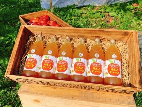 【11ぴきのねこラベル】 丸末のりんごジュース 1L × 6本セット