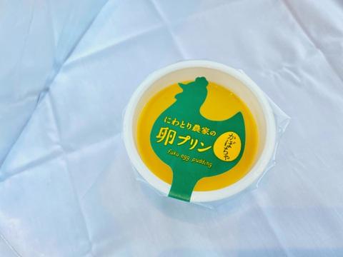 かぼちゃプリン満喫セット(6個)