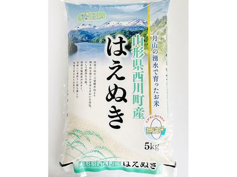 【山形県産 月山の湧水で育ったお米  はえぬき】白米 無洗米 5kg 2019(令和元)年産 新米