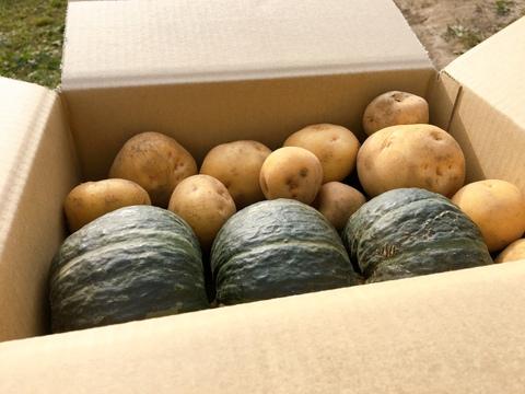☆秋の味覚☆北海道産 ホクホクセット 約3kg