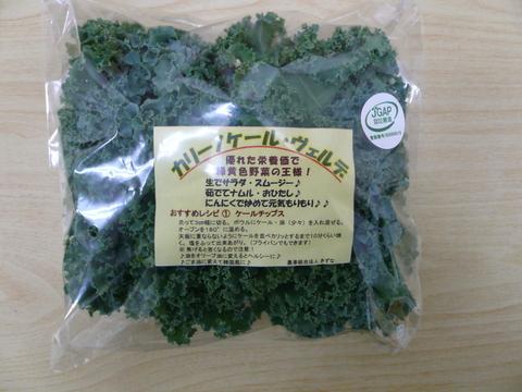 優れた栄養価で緑黄色野菜の王様!カリーノケール ヴェルデ・バラ詰め2㎏