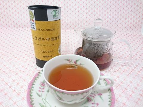 【有機栽培】ピリッと!生姜のアクセントが効いた生姜紅茶(ティーバッグ2g×15)
