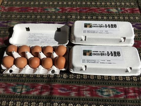 生食に最適! 放し飼いの鶏が産んだ卵30個入り