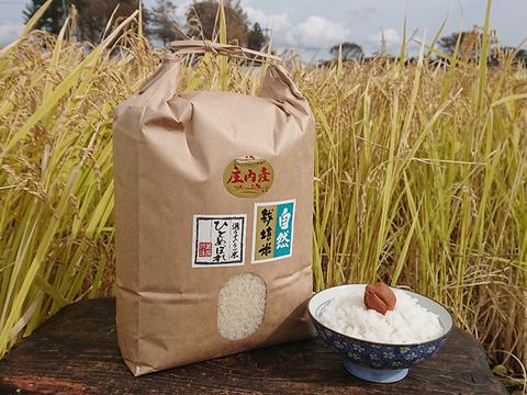 【標準精米   20kg】米の旨味たっぷり 自然栽培米 ひとめぼれ