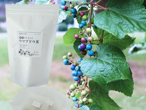 大容量!酵素が生きてる!ウマブドウ茶(紐付きティーバッグ入り2gx45包x1袋)  独自の特殊加工を是非!野ぶどう茶
