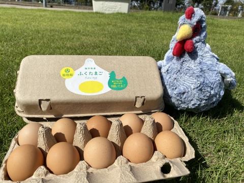 まずは卵かけご飯で!福井県・福地鶏のふくたまご(40個)