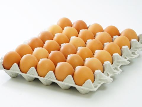 【土曜日発送】兵庫県産の新鮮な朝どりL卵27個(30個入り3個割れ保障)