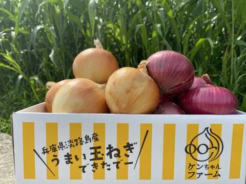 【期間限定】淡路島たまねぎ☆食べ比べ☆セット 3kg