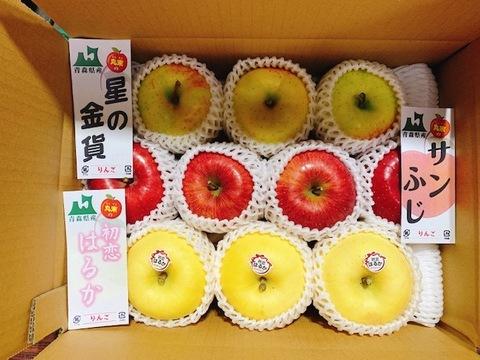 """【贈答用】極甘""""はるか""""入り!厳選りんご詰め合わせ 3kg (8~10個)"""