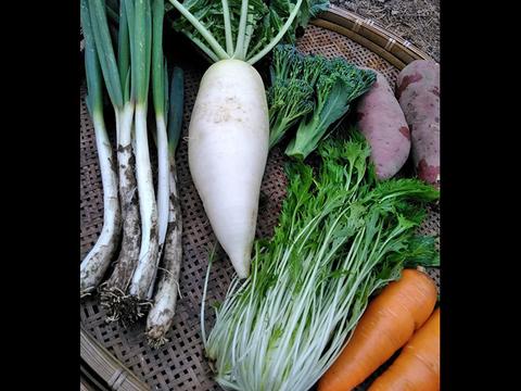 野菜ソムリエがお届け*季節のお野菜詰め合わせ(6-7品)