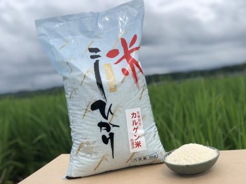 【カルシウム強化米】こしひかりカルゲン米(5kg×2袋)400円引き