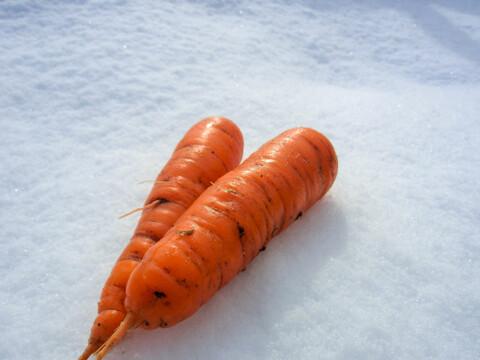 甘味抜群!雪下にんじん (1kg)