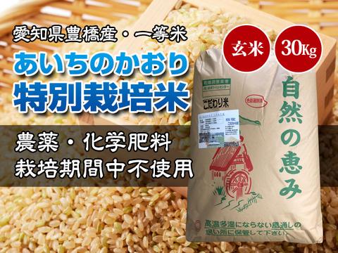 【農薬不使用・一等米】愛知県産 あいちのかおり 玄米30kg(10㎏×3袋)