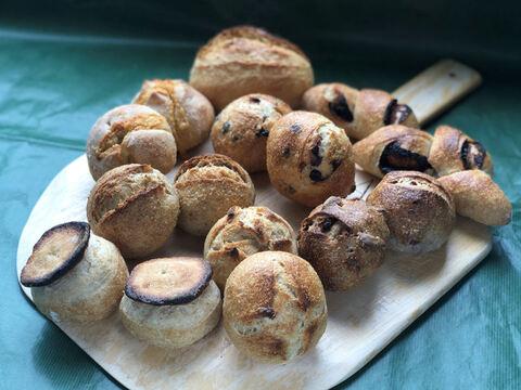 【超貴重な有機JAS認証パン】パンセット⑮:麦の栽培から一貫生産 自然栽培小麦のみ使用した小さなフランスパンセット