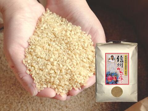 新米 【玄米10kg】信州りんご米 こしひかり (5kg×2袋) 令和3年産