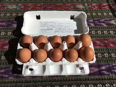 生食に最適! 放し飼いの鶏が産んだ卵10個入り