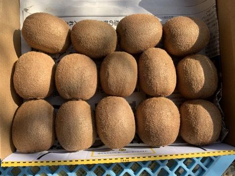 【クール便】*寒冷地の方専用*コロナ対策応援価格!極美味キウイフルーツ 竹 箱無し 1kg(約8〜16個)