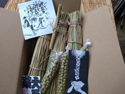 わらづと納豆 手作りセット