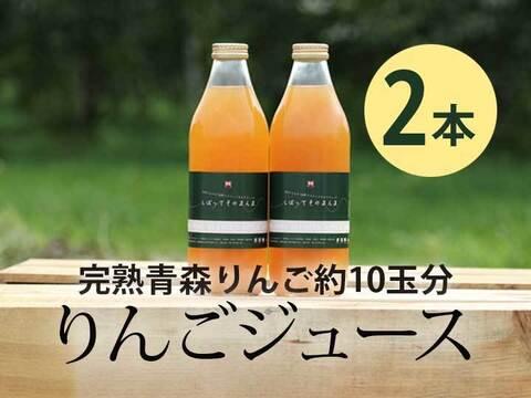 完熟青森りんご100%【しぼってそのまんま】濃厚りんごジュース(1L×2本入)