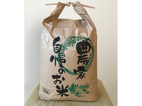 減農薬栽培米【玄米】雪若丸5kg 山形県飯豊町産