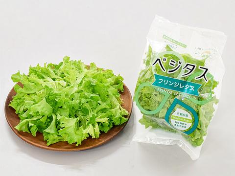 緑黄色野菜が苦手な方に! 1袋で半日分の緑黄色野菜が摂れる独占レタス。えぐみが無くパクパク食べれます。食物繊維やβカロテン豊富で免疫力アップ。 ベジタス フリンジ6袋セット
