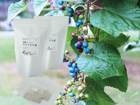 酵素が生きてる!ウマブドウ茶(紐付きティーバッグ入り2gx18包x2袋)  独自の特殊加工を是非!野ぶどう茶