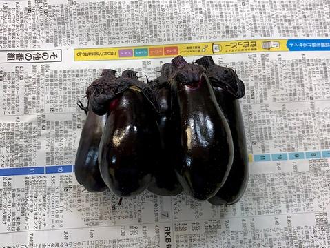 JAS認証 有機栽培 ミニ茄子 10個