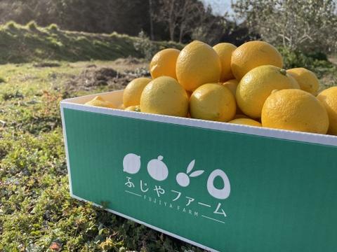 【今シーズン最後の出荷です!!!】大崎上島 こだわり完熟レモン 4kg  (ノーワックス、防腐剤不使用!!)