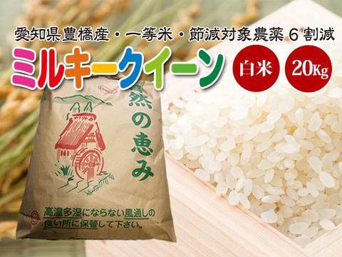 【節減対象農薬6割減・一等米】ミルキークイーン 白米20kg(10㎏×2袋)【令和2年・愛知県産】