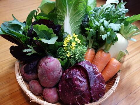 【数量限定】IdeaFarmのおまかせ冬野菜セット(5~7品目)