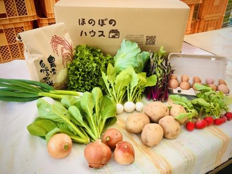 こどもの味覚を育むお米・野菜セットM (お米3kg、野菜8種、卵10個)