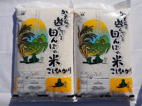 千葉県産 コシヒカリ 白米 10kg