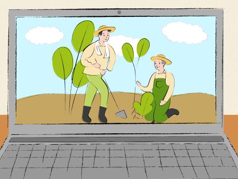 【オンライン農業体験(2/6 11:00~)】みかんの収穫体験をオンラインで!?旬のはるか&不知火食べ比べ(みかん2種4kg)