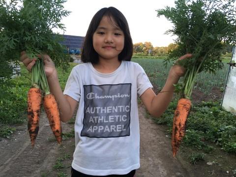 生で皮ごと食べられちゃう!昔ながらの味わいの人参さん! 癒やしの野菜 無肥料 無農薬 無堆肥栽培