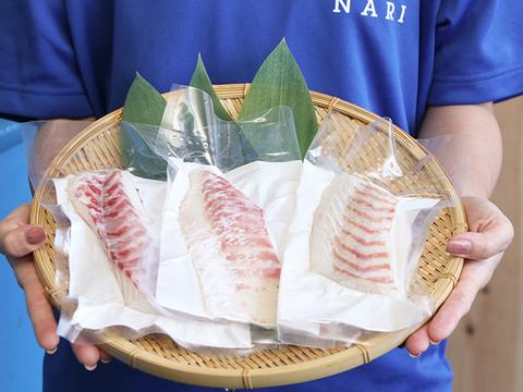 【新鮮なお刺身をまずはお試しで☆】天草産「真鯛のサク/3パック」(養殖)特殊冷凍